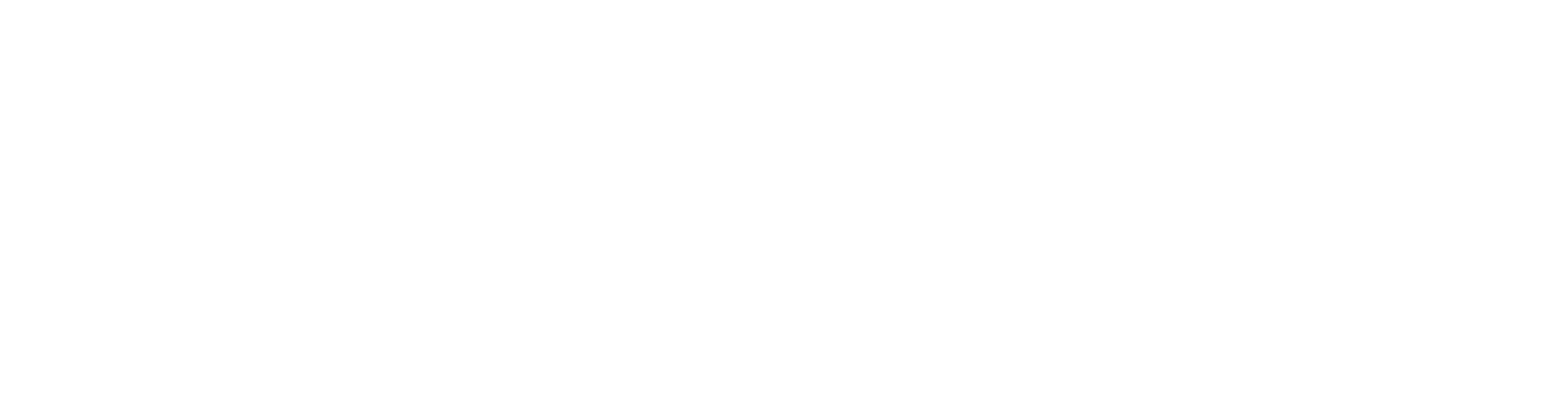 HassleFree Solutions Logo